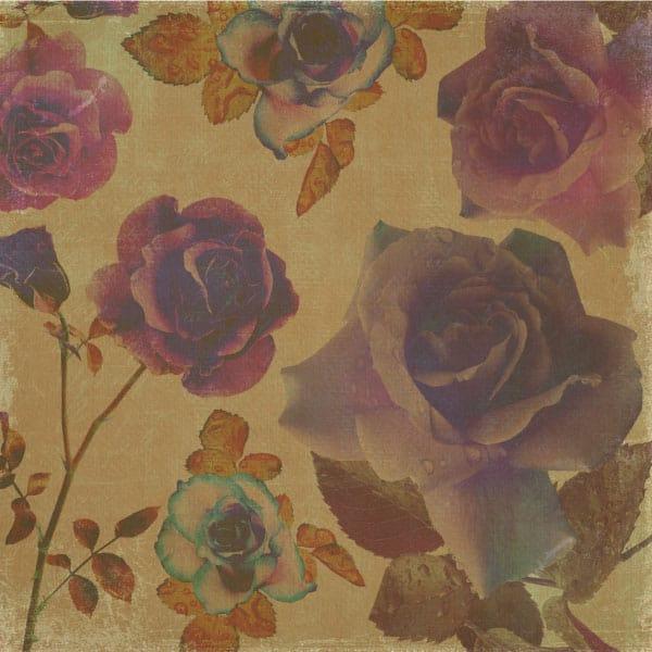 vintage grunge rose paper